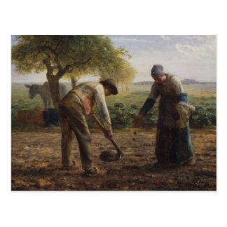 Peinture de millet de Jean Cartes Postales