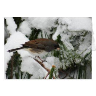 Peinture d'oiseau chanteur de Junco Carte De Vœux