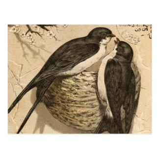 Peinture mignonne blanche noire vintage d'insépara carte postale
