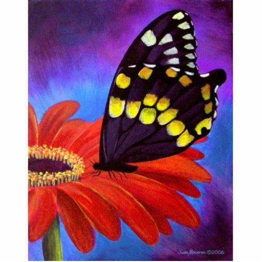 peinture noire de marguerite de papillon multi photo sculpture zazzle. Black Bedroom Furniture Sets. Home Design Ideas