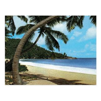 Peinture tropicale de plage cartes postales
