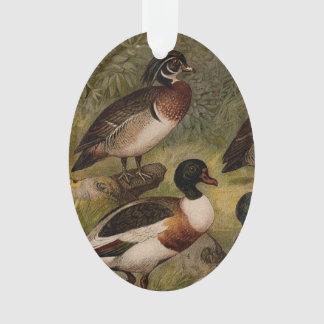 Peinture vintage colorée des canards