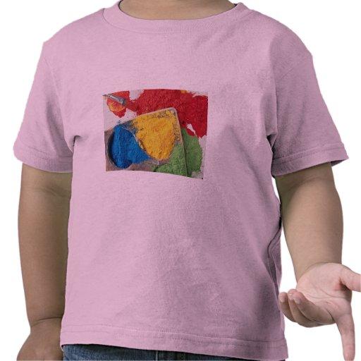 Peintures de poudre sur la palette avec la brosse t-shirt