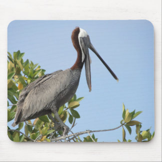 Pelican on the tree tapis de souris