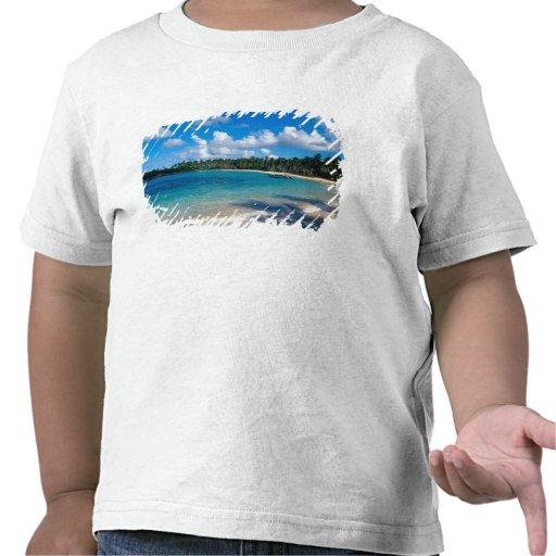 Péninsule de Samana de La, République Dominicaine, T-shirt