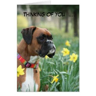 Pensée à vous carte de voeux de chien de boxeur