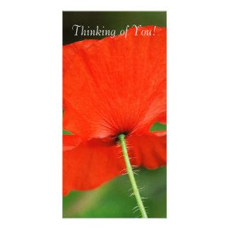 Pensée à vous ! cartes de vœux avec photo