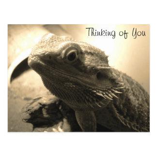 Pensée à vous carte postale