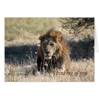 Pensée à vous cartes de note de lion