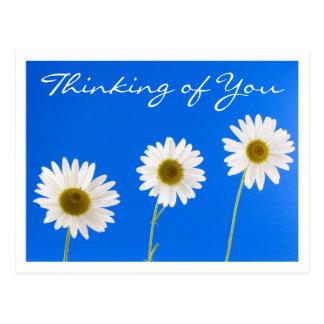 Pensée florale à vous fleur de marguerite blanche carte postale