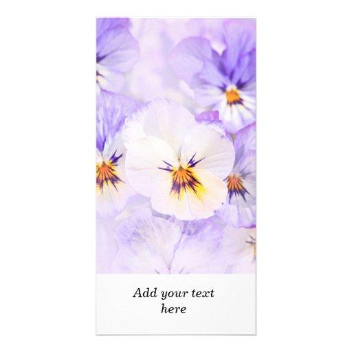 Pensées Cartes De Vœux Avec Photo