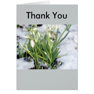 Perce-neiges dans le carte de remerciements de