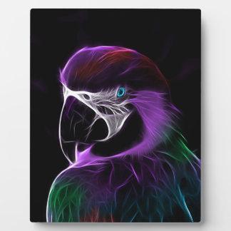 perroquet #2 plaque photo
