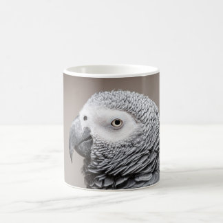 Perroquet de gris de gris africain du Congo de Mug