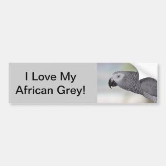 Perroquet magnifique de gris africain autocollant de voiture