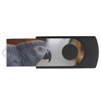 Perroquet majestueux de gris africain clé USB 3.0 swivel