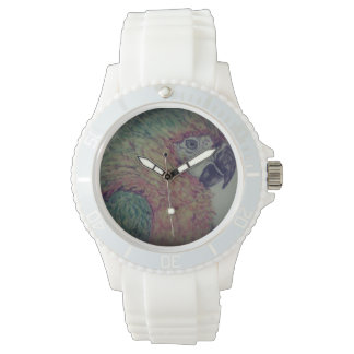 perroquet montre