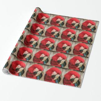 Perroquet vert d'ara d'aile de papier d'emballage papiers cadeaux noël