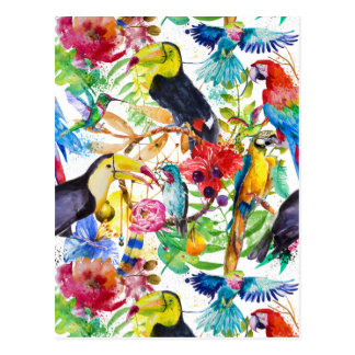 Perroquets colorés 2 d'aquarelle carte postale