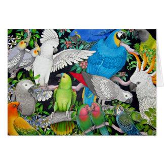 Perroquets de la carte du monde