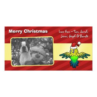 Perruche de Noël Photocartes
