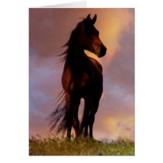 Perte de carte de sympathie de cheval