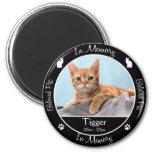 - Perte de chat - photo faite sur commande commémo Magnets Pour Réfrigérateur