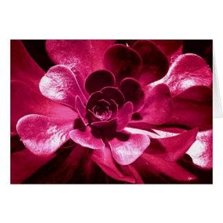 Pétales de roses indien cartes