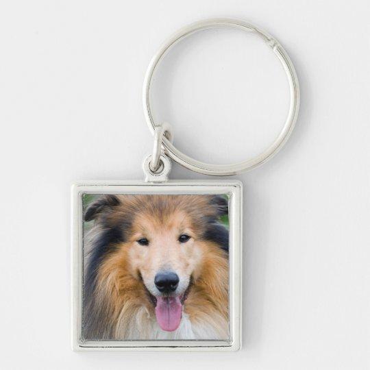 Petit (3,5cm) Porte-clé carré Premium chien