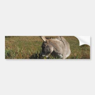 Petit âne gris avec des fleurs sauvages autocollant de voiture