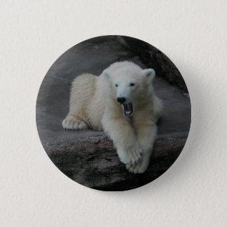 Petit animal de baîllement d'ours blanc pin's