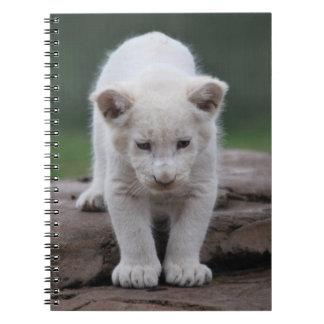 Petit animal de lion blanc de bébé carnets