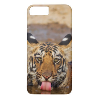 Petit animal de tigre royal de Bengale, eau Coque iPhone 8 Plus/7 Plus