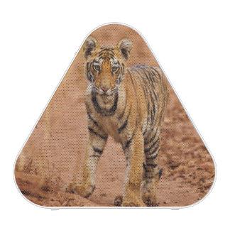 Petit animal de tigre royal de Bengale sur le Haut-parleur Bluetooth