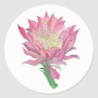 Petit autocollant rond de fleur rose de cactus