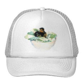 Petit chapeau mignon de bébé casquettes