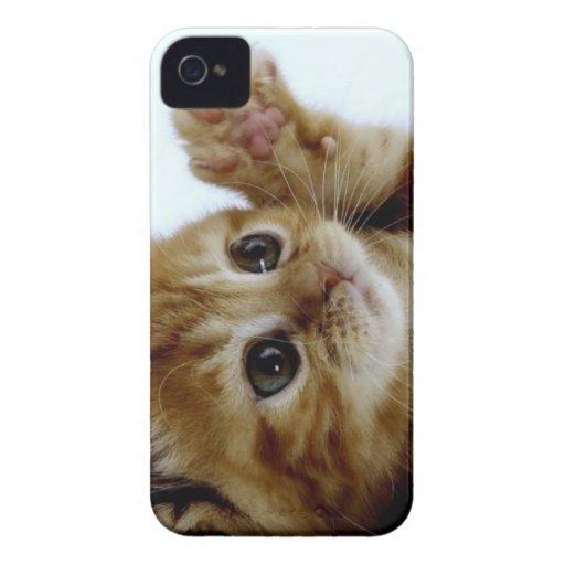 acheter iphone 5 aux usa