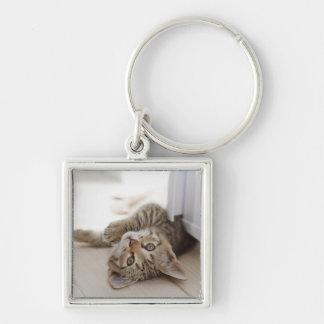 Petit chaton mignon porte-clé carré argenté