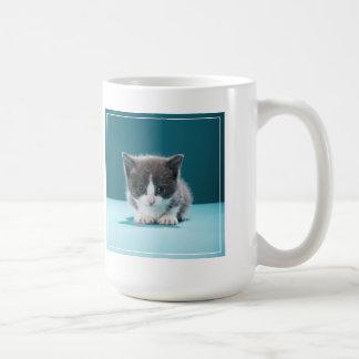 Petit chaton mug