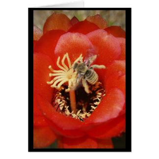 Petit déjeuner d'abeille carte de vœux