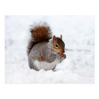 Petit écureuil brun mignon dans la neige carte postale