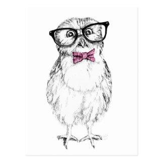 Petit et futé d'encre dessin   de jeune hibou carte postale