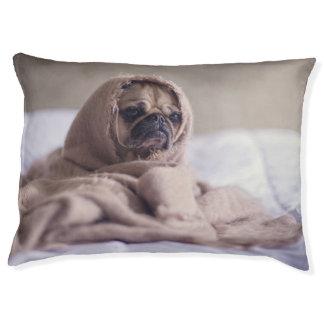 Petit froid de sensation de chienchien lit pour chien