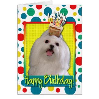 Petit gâteau d'anniversaire - maltais cartes