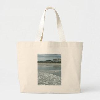 Petit héron sur la plage grand sac