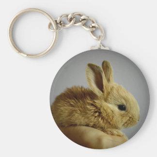 Petit lapin mignon à disposition porte-clé rond
