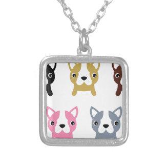 Petit merveilleux mignon de chiens coloré collier