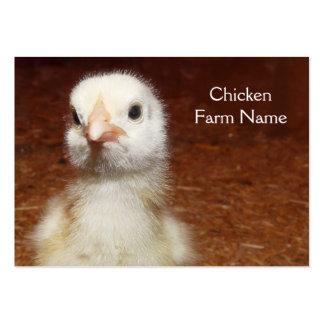 Petit poussin jaune - ferme de poulet carte de visite
