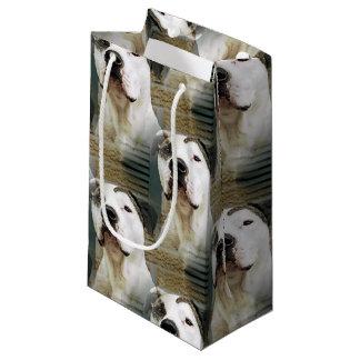 Petit Sac Cadeau À l'os de pitbull