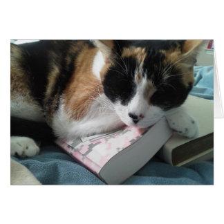 petit somme de chat cartes de vœux